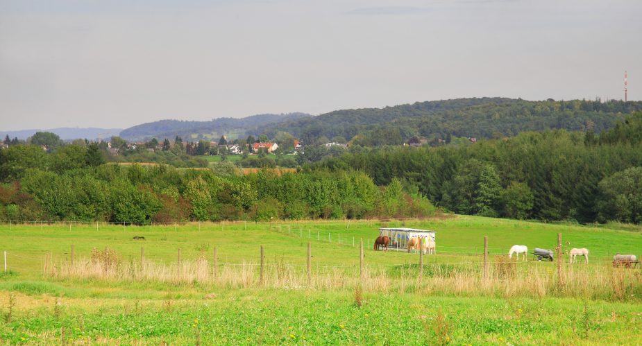 Regionalpark Limesroute
