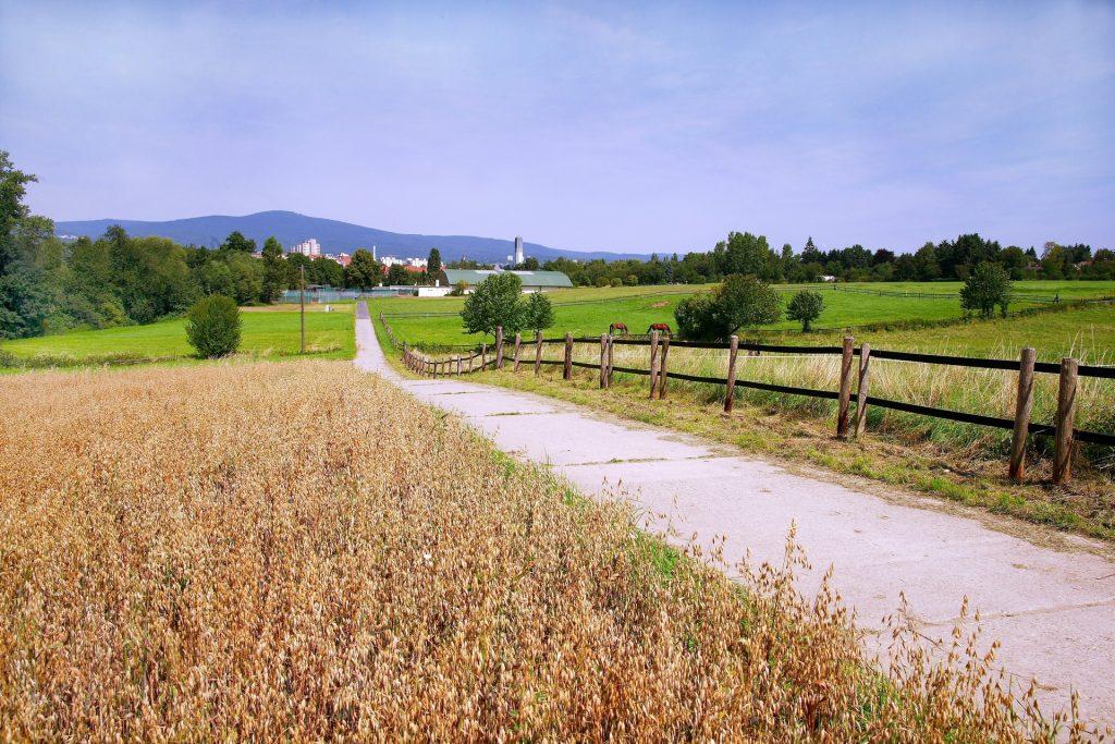 Regionalpark Route Nidda Opelzoo