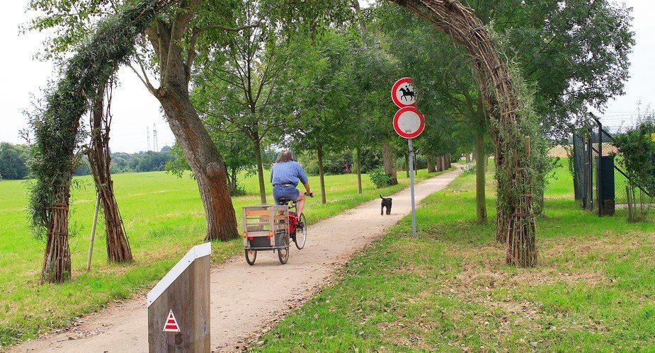 Burgleweg Hattersheim