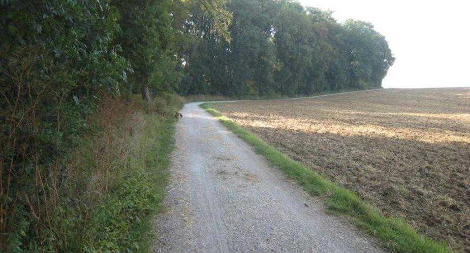 Eschbach und Erlenbachtal