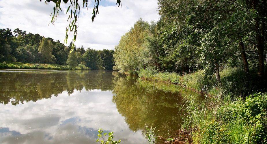 Landschaftspark Bruchsee