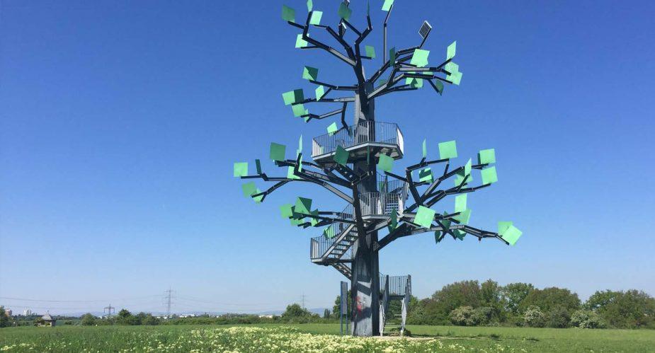 eisenbaum slider