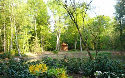 landgräfliche gartenlandschaft forstgarten
