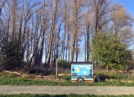 regionalpark-wanderbienen-schiffsmühle (2)