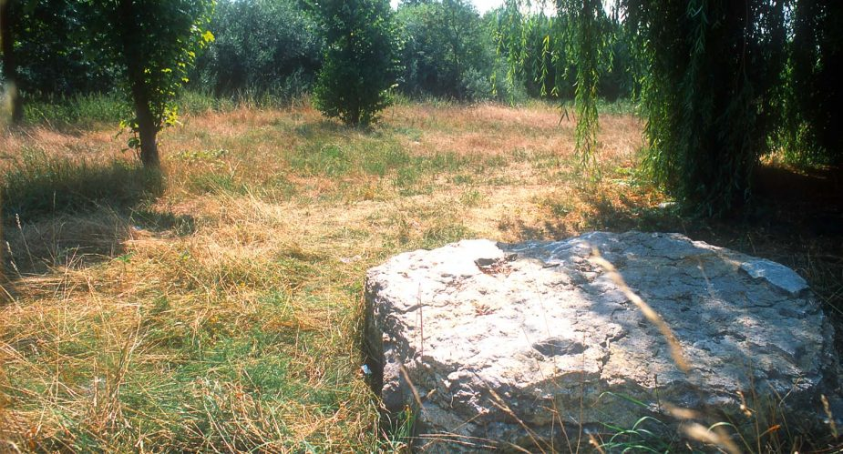 steinplatte bischofsheim