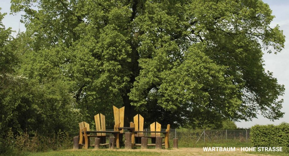 wartbaum-hohe-straße3