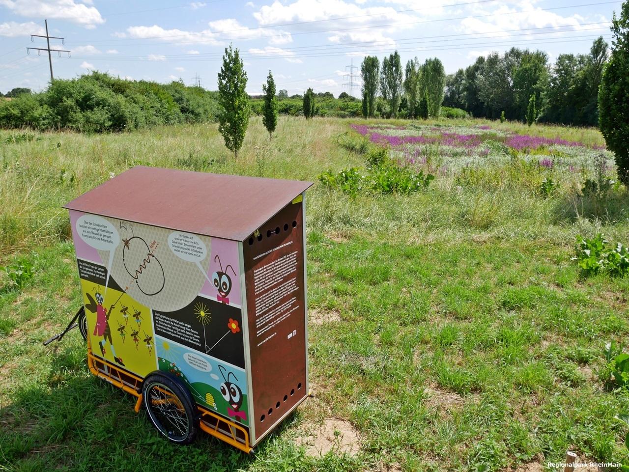 regionalpark wanderbienen taunengraben