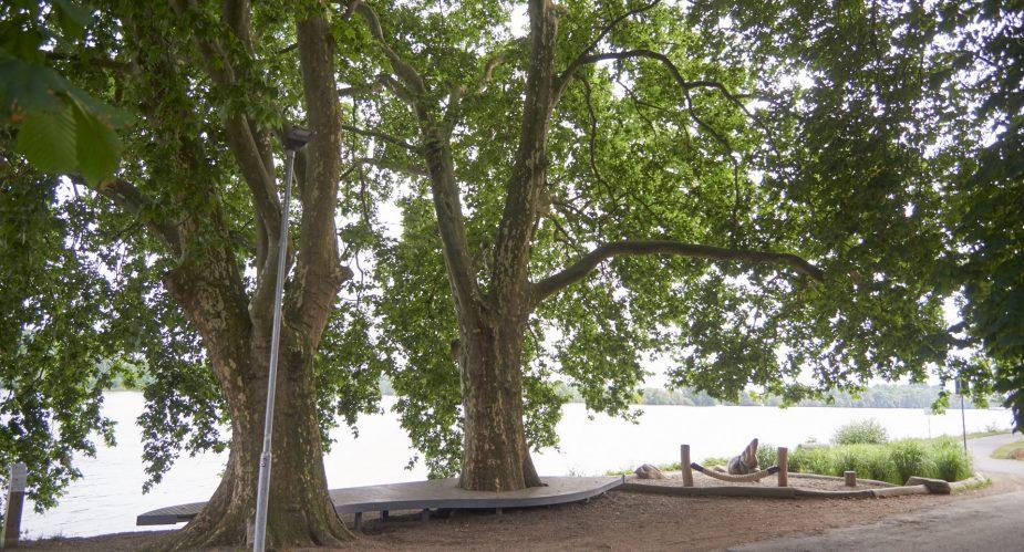 Regionalpark Rheingau Nikolausquelle - Eltville (2)