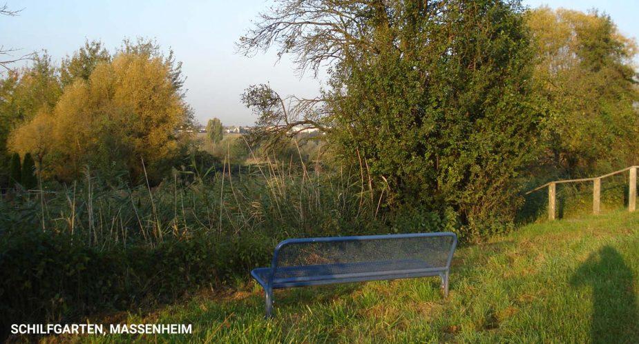 schilfgarten-massenheim