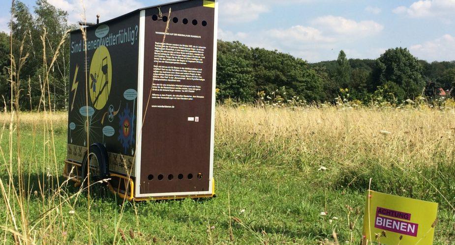 wanderbienen wanderbienen wetterpark