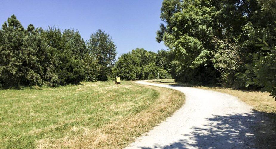 Regionalpark-Wanderbienen-Arboretum-6_hires-e1469089989320