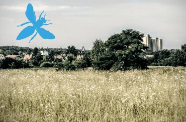 wetterpark_370