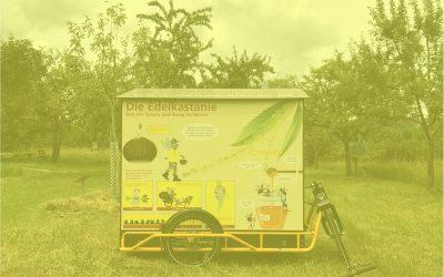 wanderbienen-kronberg-2020 (1)gelb