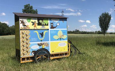 wanderbienenwagen-vogelnest-2020 (2)