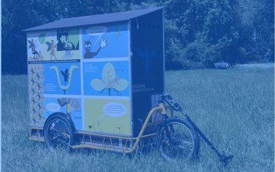 wanderbienenwagen-vogelnest-2020-4-blau