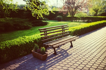bench-in-the-garden-5760